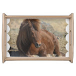 Adorable Chestnut Icelandic Horse Serving Tray