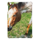 Appaloosa Horse iPad Mini Cover