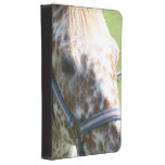 Appaloosa Horse Kindle Touch Case