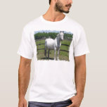 Arab Horse Men's T-Shirt