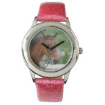 Bay Arab Horse Watches