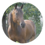 Bay Thoroughbred Horse Plate