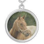 Chestnut Horse in a Field Round Pendant Necklace