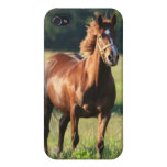 Chestnut Horse iPhone Case