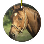 Chestnut Pony Ornament