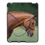Chestnut Show Horse iPad Case