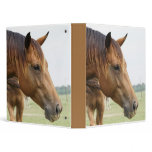 Curious Thoroughbred Binder