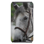 Cute Appaloosa Horse iTouch Case