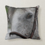 Cute Appaloosa Horse Pillow