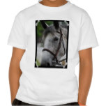 Cute Appaloosa Horse Youth T-Shirt