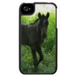 Cute Foal iPhone 4 Case