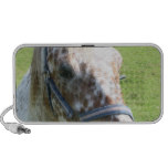Dappled Appaloosa Horse  Portable Speakers