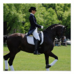 Dressage Horse Rider Canvas Print
