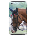Dutch Warmblood Horse iTouch Case