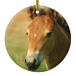 Filly Ornament
