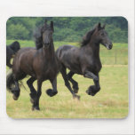 Galloping Friesian Horses  Mouse Pad