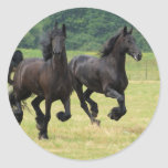 Galloping Friesian Horses  Stickers
