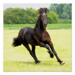 Galloping Horse Poster