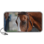 Gorgeous Chestnut Show Horse Portable Speakers