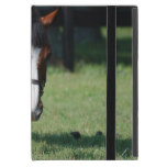 Gorgeous Quarter Horse Case For iPad Mini