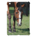 Gorgeous Quarter Horse Cover For The iPad Mini