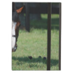 Gorgeous Quarter Horse iPad Air Case