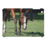 Gorgeous Quarter Horse iPad Mini Cover