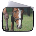 Gorgeous Quarter Horse Laptop Sleeve