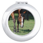 Gorgeous Quarter Horse Makeup Mirror
