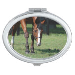 Gorgeous Quarter Horse Mirror For Makeup
