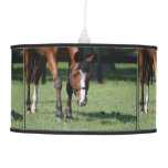 Gorgeous Quarter Horse Pendant Lamp