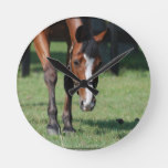 Gorgeous Quarter Horse Round Clock