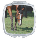 Gorgeous Quarter Horse Vanity Mirror