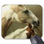 Gray Eventing Horse Mouse Pad