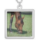Grazing Quarter Horse Personalized Necklace