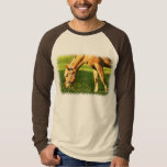 Palomino Horse Grazing Guy's T-Shirt