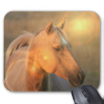 Palomino Horse in Light Mouse Pad