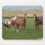 Quarter Horse Herd Mouse Pad