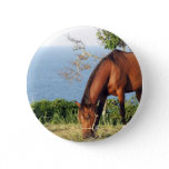 Quarter Horse Photo Round Pin