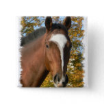 Quarter Horse Square Pin