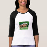 Racing Palomino Horses Baseball T-Shirt