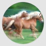 Racing Palomino Horses Sticker