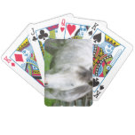 Sleepy Appaloosa Deck of Cards Bicycle Playing Cards