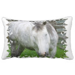 Sleepy Appaloosa Pillow