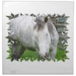 Sleepy Appaloosa Set of four Napkins
