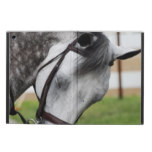 Sweet Appaloosa Horse Cover For iPad Air