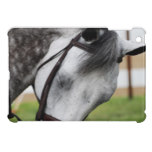 Sweet Appaloosa Horse Cover For The iPad Mini