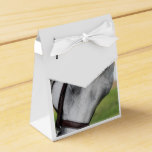 Sweet Appaloosa Horse Favor Box