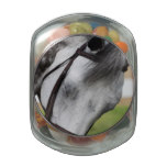 Sweet Appaloosa Horse Glass Candy Jar