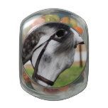 Sweet Appaloosa Horse Glass Jar